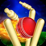 RunOut Master - Cricket World Cup 2019 1.57