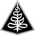 Radio IniIslam icon