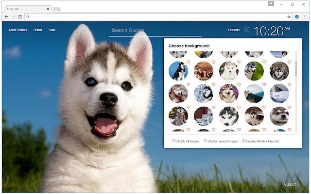 Husky Wallpaper HD New Tab - Huskies Themes