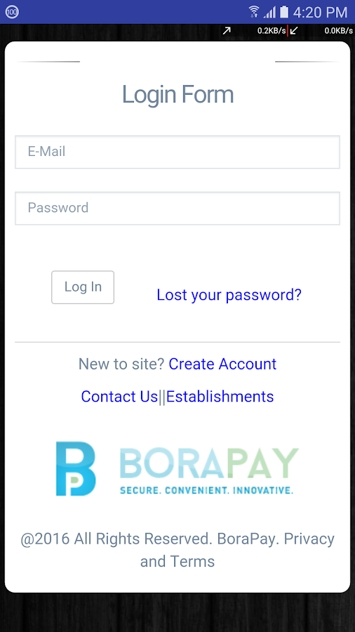 BoraPay- screenshot