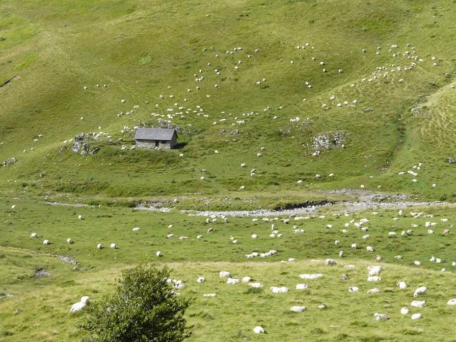 Cabane d'Ardané
