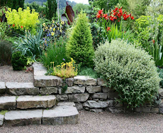 ガーデンストーンテクスチャのアイデアのおすすめ画像1