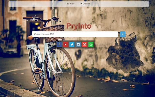 PryInto -Custom Web Search