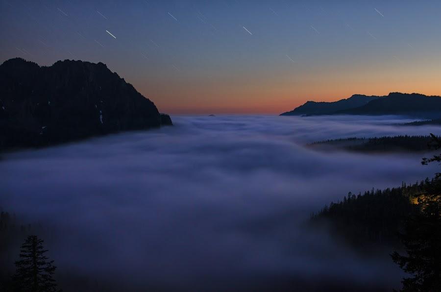 Valley of Fog by Zach Blackwood - Landscapes Starscapes ( washington, fog, blue hour, sunset, stars, mt. rainier, valley )