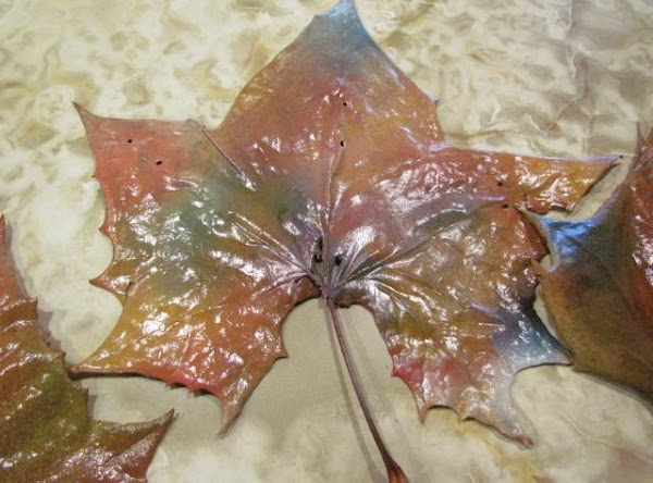 Painted Sycamore Tree Leaves For Decorating Recipe