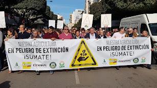 Imagen de la movilización de ayer.