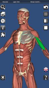 3D Bones and Organs (Anatomy) – Download Mod Apk 1