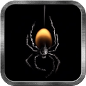 Deadly Spider Live Wallpaper icon