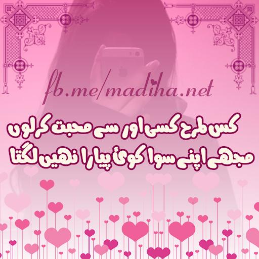 Urdu On Picture Pro  screenshots 5
