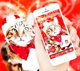 Christmas Cat Theme Apk Download Free for PC, smart TV