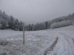 Photo: 08.Widoki na razie niespecjalne, a szlak wije się między szczytami omijając ich wierzchołki.