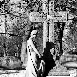 by Gerard Hildebrandt - Black & White Objects & Still Life
