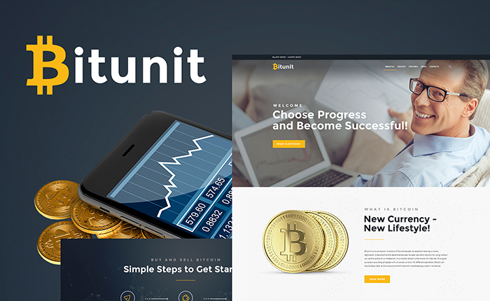 Bitcoin Free WordPress Theme