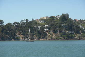 Photo: on the ferry from Pier 41 to Tiburon for a bike tour
