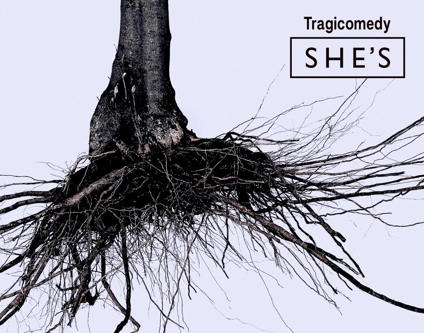 SHE'S 主唱 井上龍馬 解說專輯《Tragicomedy》