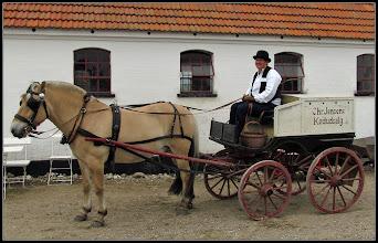 Photo: Hest og vogn