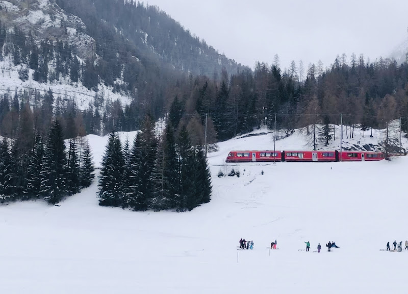 Il trenino rosso del Bernina di Dama