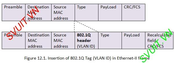 chuan 802.1q (dot1q)