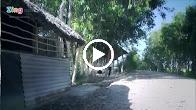 Chuyện Hai Mùa Chim Cúm Núm – Nhật Khánh