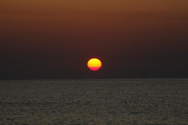 el amanecer di aritex