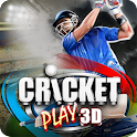 Cricket Juego 3D:Live The Game icon
