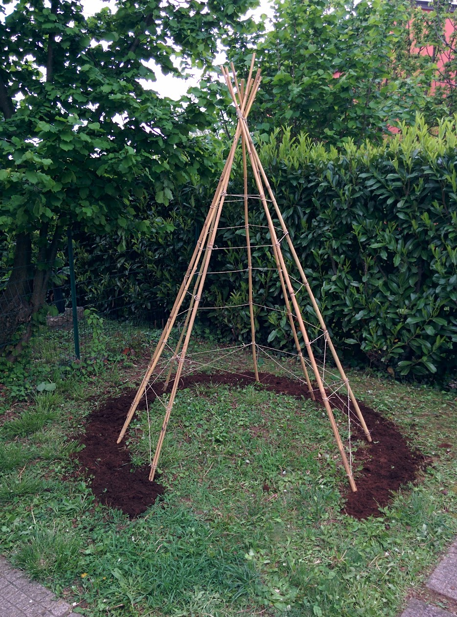 how to make a bean pole teepee