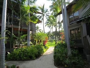 Photo: Walkway to Howard and Laurel's unit atKanaloa at Kona. Lovely place.