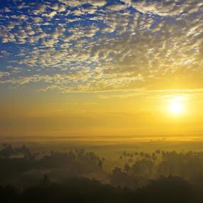 beautiful morning by An'naas Sobrie Al Arif - Landscapes Sunsets & Sunrises ( sunrises, village, forest, landscape, natural )
