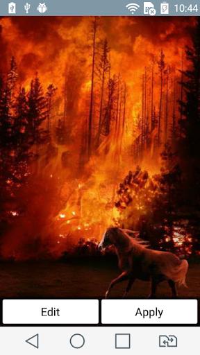 Wildfire live wallpaper