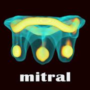 ViV Mitral