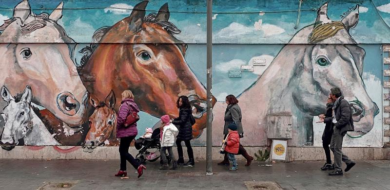 E i cavalli stanno a guardare................... di romano