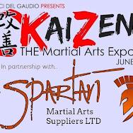 kaizen martial arts expo 2018