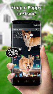 Köpeğe Ekran Şakası - iDog Ekran Görüntüsü