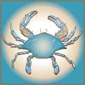Chesapeake 360 icon