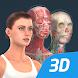人体 (女)インタラクティブな教育用3D