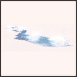 澄んだ睡蓮