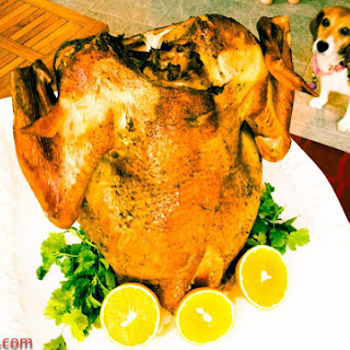 Canned Turkey Recipes.