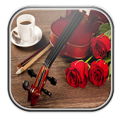 Rose Violant Live Wallpaper