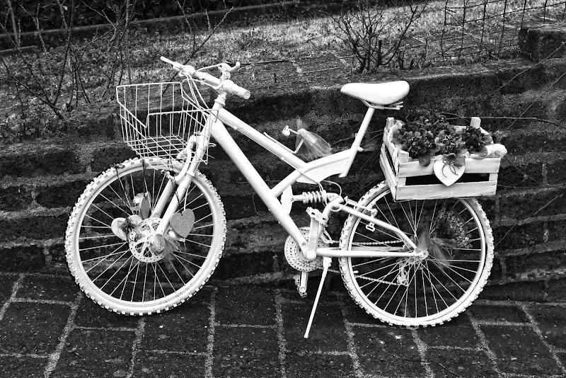 White bike di Photobyas Paolo Biasibetti