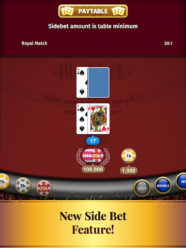 Blackjack Card Game screenshot 13