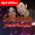 Señorita - Shawn Mendes ft. Camila Cbl Mp3 Offline icon