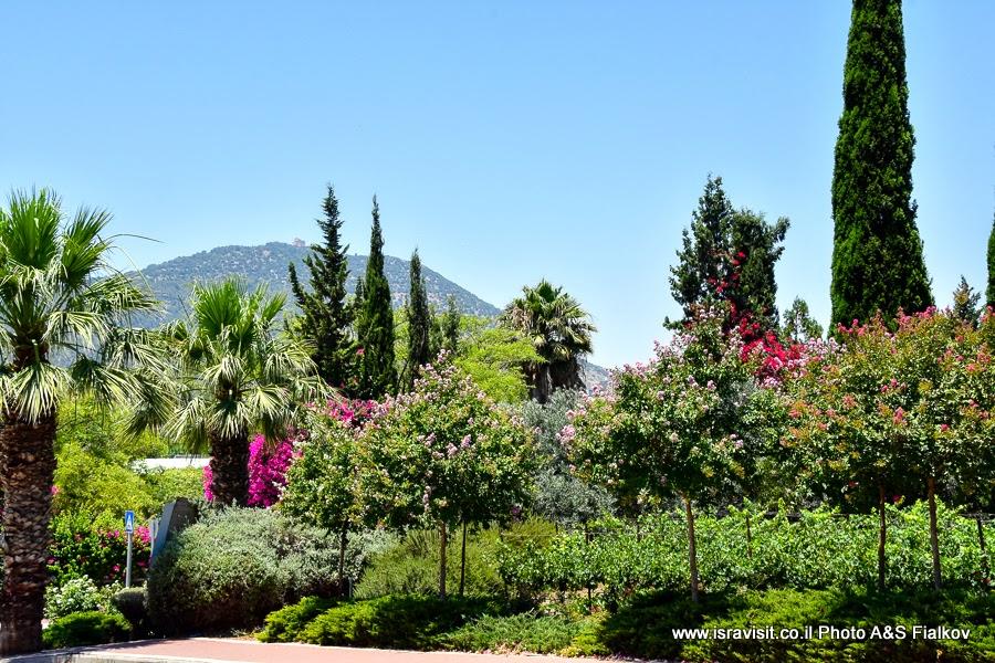 Гора Фавор, Нижняя Галилея. Экскурсия по Израилю.