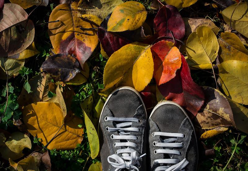 Con i piedi per terra di surimi74