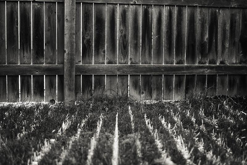Photo: Light Cracks In my backyard.  For#monochromemonday by +Hans Berendsen +Jerry Johnson +Manuel Votta +Steve Barge & +Nurcan Azaz (Lightningquick copy/paste theme submission via +Google+ Photography Themes Google Calendar)