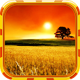 Landscape Wallpaper icon