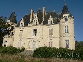château à La Ferté-Bernard (72)