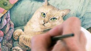 Kurilian Bobtail, Chausie, Dwelf, Burmilla, Lambkin and a Klepto Cat thumbnail
