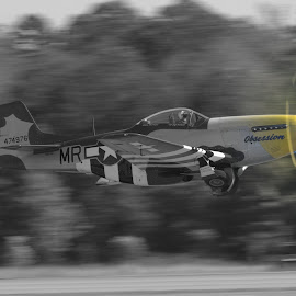 B&W with a Twist by Ron Malec - Transportation Airplanes ( warbird, airshow, mustang, p-51, north american,  )