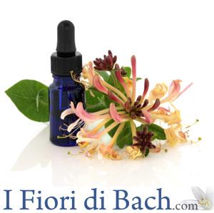 corso online fiori di Bach