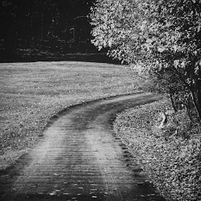 The only way by Al Mansur - Instagram & Mobile Instagram ( instagram, instamood, instalife, instago, instadaily, instabest, instaphoto, instaaddict, instalife, statigram, webstagram, photowall, pitsburg, photography, photostreet, blackandwhite )